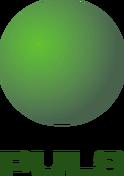 TV Puls logo old