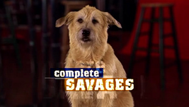 Complete Savages 2004 Intertitle
