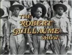The robert guillaume show