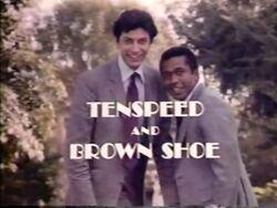 TenspeedBrownShoe
