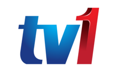 TV1 Logo 2011