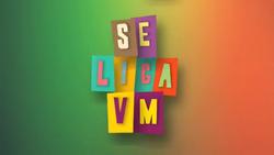 Se Liga VM 2015