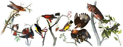 File:Google - 226th Birthday of John James Audubon.jpg