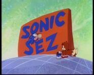 Sonic sez