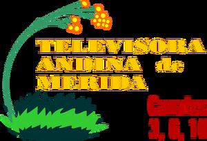 Logo de TAM 1990-1995