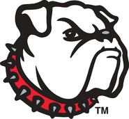 6231 georgia bulldogs-alternate-1996