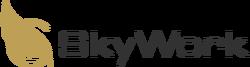 SkyWork logo 2010