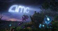 Amc2009 b