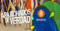 Televisa Brasil
