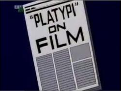 Platypi on Film