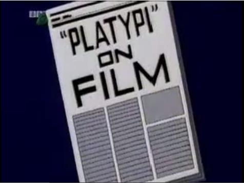 File:Platypi on Film.png