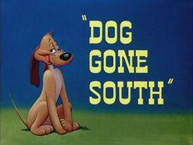 08-doggonesouth