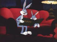Bugs & Clyde