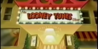 The Looney Tunes Show (2002 TV Series)