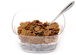 Raisin-Bran-Bowl