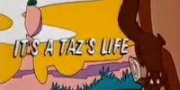 It's a Taz's Life