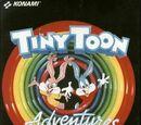 Tiny Toon Adventures (video game)