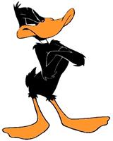 Daffy PNG