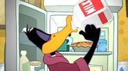 Working Duck (11)