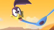Road Runner Sticks Out His Tongue
