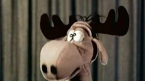 Intro and Outro bumpers featuring the Bullwinkle puppet