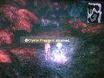 Crystal-05
