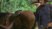 5x15-blooper-hand-of-horse-trainer.png