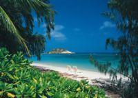 File:Lizard island.jpg