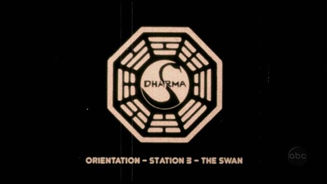 ملف:Swan orientation.jpg