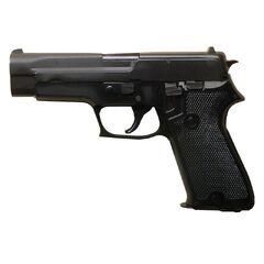 Sig Sauer P226/P228