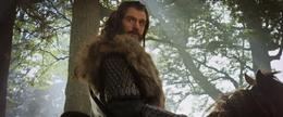 Thorin 2 - The Hobbit