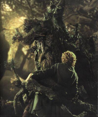 File:Treebeard grabs Pippin.jpg