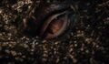 The-Hobbit-Smaug-Eye.jpg