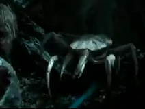 Unidentified pale-white Murkwood crustacious tunnel-building spider-centipede-nymph-crab