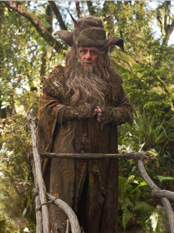 File:Radagast the Brown.png