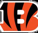 Cincinnati Bengals (2013)