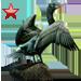 Item doublecrestedcormorant ruby 01