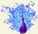 Royal Peacock Phoenix
