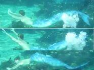 Erikswimming