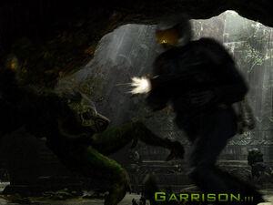 Ch3.garrison