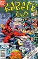 Karate Kid 10