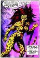 Cheetah 009