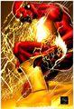 Flash 0020