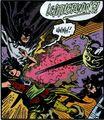 Robin Redblade 008