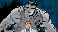 Bruce Banner + Gray Hulk