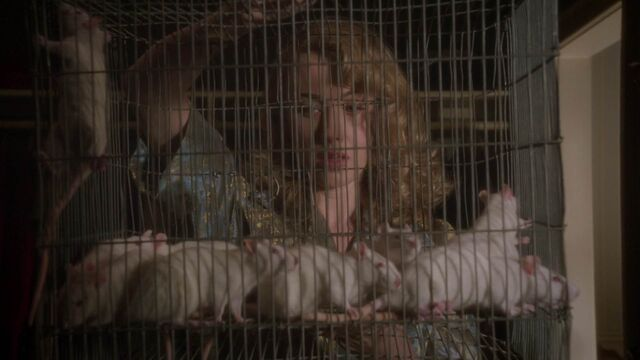 File:WhitneyFrost-Rats.jpeg