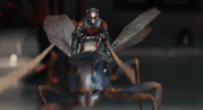 Ant-Man (film) 65