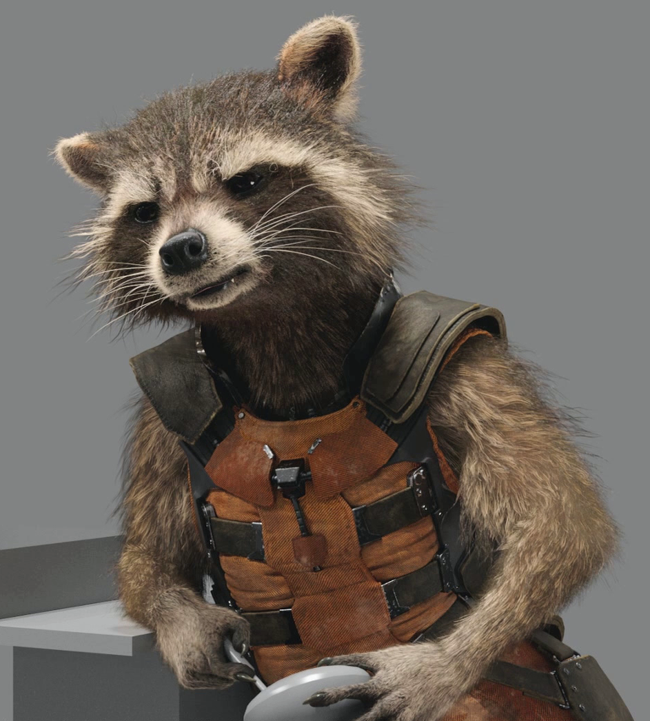 Rocket Raccoon  Marvel Cinematic Database  FANDOM