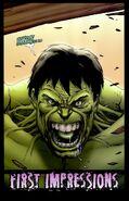 Hulk Fury