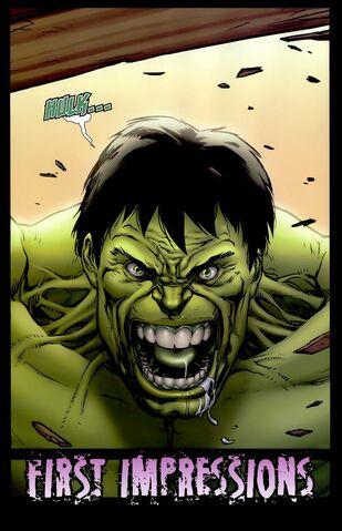 File:Hulk Fury.jpeg